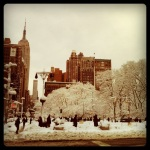 madison square park, winter