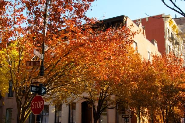 West Village, November 2012