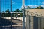 Skater Boyz